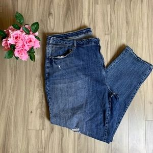 Lane Bryant Distressed Embroidered Skinny Jeans